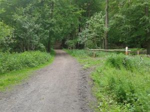 Chemins de travers Domaine Solvay