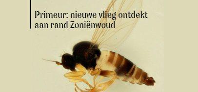 vlieg_NL